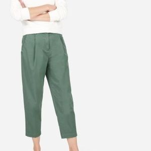 Everlane slouchy chino pant in sage green 0729